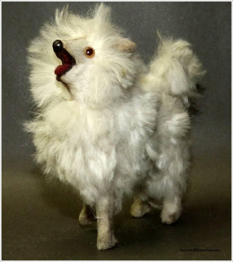 kleiner hund mit fell fellhund wei er spitz mit glasaugen um 1920 ebay. Black Bedroom Furniture Sets. Home Design Ideas